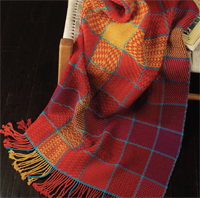 Cozy Studio Nap Blanket by Robyn Spady