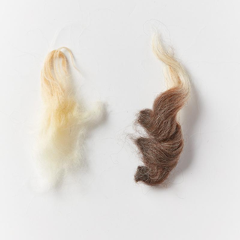 wool, hair, and kemp