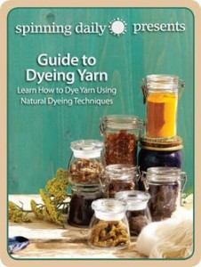 The free Guide to Dyeing Yarn eBook teaches how to dye yarn using natural dyeing techniques.