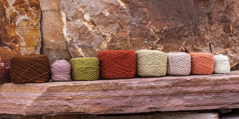 A variety of natural dyes from Cindy Craft's garden. Photo by Joe Coca